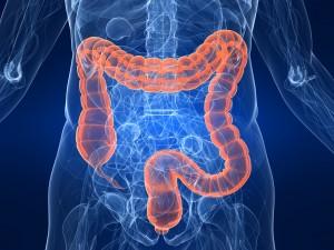Фото: Что такое колоноскопия кишечника, как  проводится
