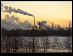 Фото: экология